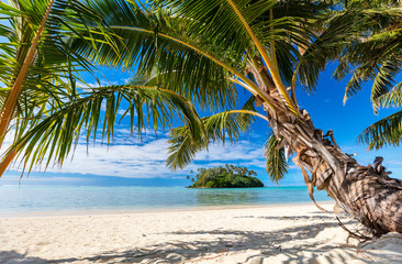 Photo sur Aluminium Tropical plage Beautiful tropical beach at exotic island in Pacific