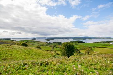 grüne Weidefelder und Wiesen mit Blick auf den Lough Corrib in Irland