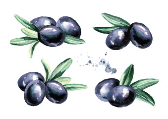 Black sweet olives set isolated on white background. Watercolor hand drawn illustration