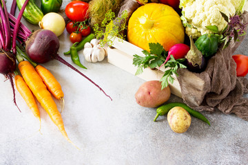 Fresh different vegetables on a gray stone or slate background. Food background. The concept of healthy eating. Copy space.