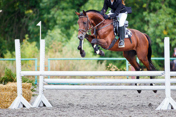 Young rider girl jumping on horse over obstacle on show jumping competition