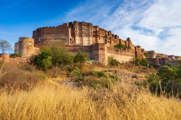 Wall Mural - Mehrangarh fort in Jodhpur, Rajasthan, India.