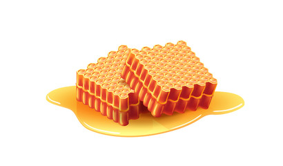 Two fresh sweet honeycombs. Apiary, dessert, ingredient. Beehive concept. Can be used for topics like food, farming, healthy eating