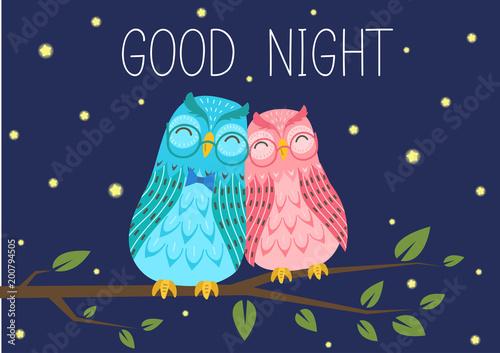Good Night Sweet Owls Couple On Tree Branch Under Starry Sky Cute