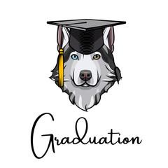 Husky dog Graduate. Graduation hat cap. Siberian husky.