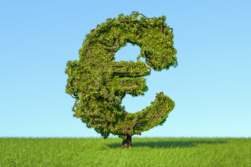 Money tree in the shape of a euro sign on the green grass against blue sky, 3D rendering