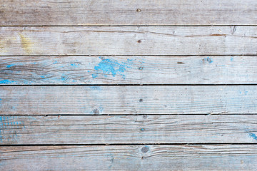 Wooden rustic retro background - gray old boards with the remains of blue paint