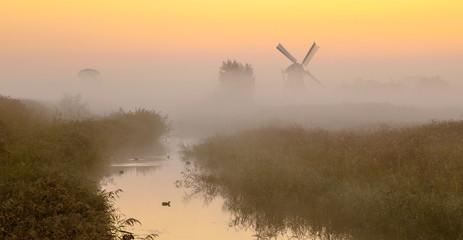 Wall Mural - Windmill in wetland