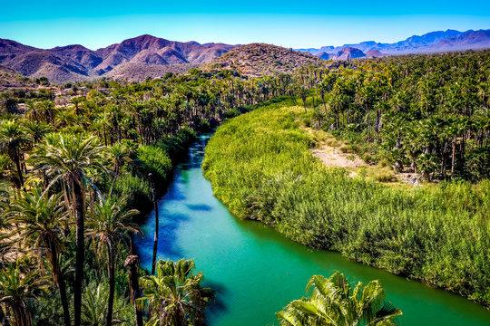 The blue-green Mulege river curves through a desert oasis in Baja California Sur, Mexico