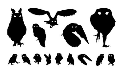 Set of Various Owl Bird Silhouette, Fly and Perch Owl Bird Silhouette