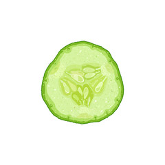 Vector illustration of cucumber slice