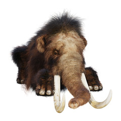 3D Rendering Woolly Mammoth on White