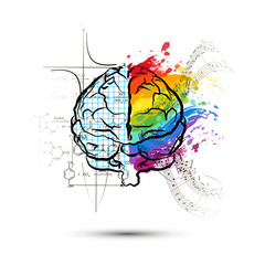 Technical and art hemispheres on human brain in front view, left and right brain functions concept on white
