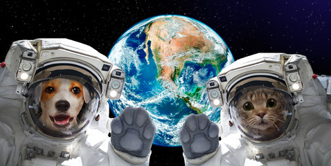 Cat and dog astronauts on the background of the globe. Elements of this image furnished by NASA.jpg