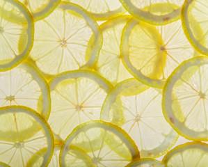 Bright fresh lemon slices, back light transparent fruit.