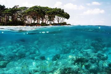 Foto op Aluminium Onder water Above and below sea surface near tropical island beach