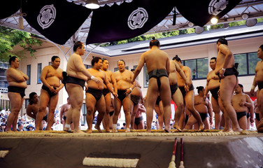 Sumo wrestlers attend a training session before an annual sumo tournament dedicated to the Yasukuni Shrine in Tokyo