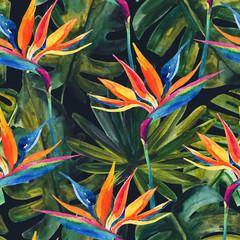 Aquarelle transparente motif tropical avec fleur d& 39 oiseau de paradis, monstera, feuille de palmier.