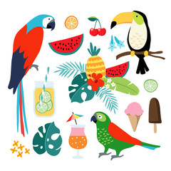 Summer tropical graphic elements. Toucan, parrot birds. Cocktails, fruit, icecream and jungle floral illustrations. Palm leaves. Isolated illustrations, flat design. stock vector.