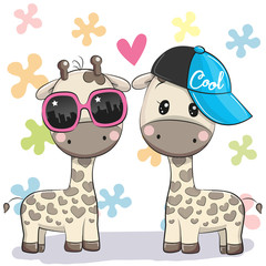 Two Cute giraffes with glasses and cap