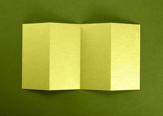 Mockup of opened four fold brochure at green background.