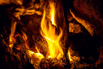 burning flame and coals