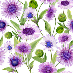 Beautiful blue and purple daisy flowers with green leaves on white background. Seamless spring pattern. Watercolor painting. Hand painted floral illustration.