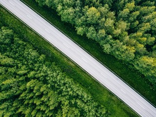 Aerial view of green summer forest with a road.