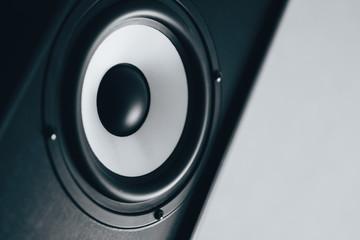 Audio speaker black and white toned