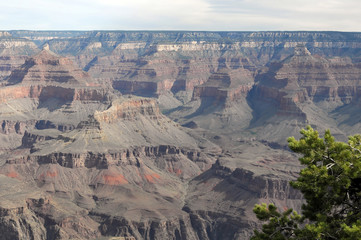 Blick in den Grand Canyon, Arizona, USA, Nordamerika