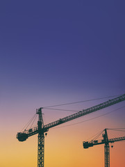 cranes silhouettes at sunset with copy space