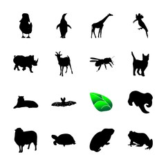 icon Animal with frog, large, sign, pictogram and decoration