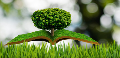 stylized image of tree in the shape of heart on the open book