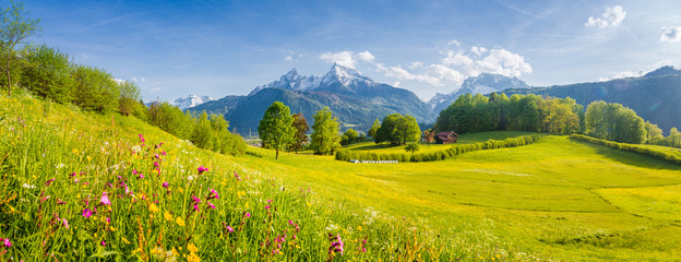 Idyllic landscape with blooming meadows and mountain peaks in the Alps in springtime