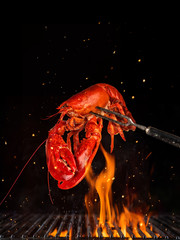 Flying whole lobster from grill grid, isolated on black background