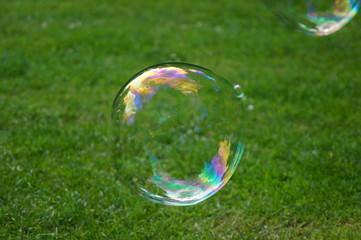Schöne bunte Seifenblase auf einer Wiese mit Spiegelungen