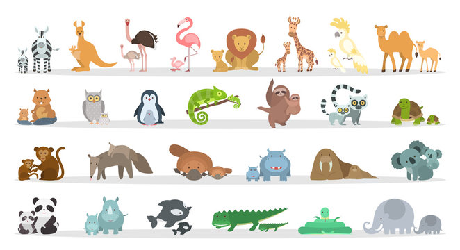 Animals families set.