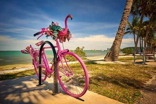 Summer Fun at Sarasota Florida Park with Pink Bicycle