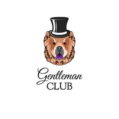 Chow chow gentleman. Top hat. Accessorry. Dog portrait. Vector.