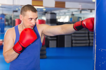 Man is training with punching bag in box gym