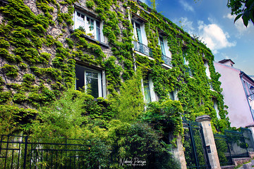 House with Green Walls Wall mural