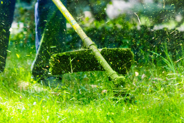 grass cutting in the garden