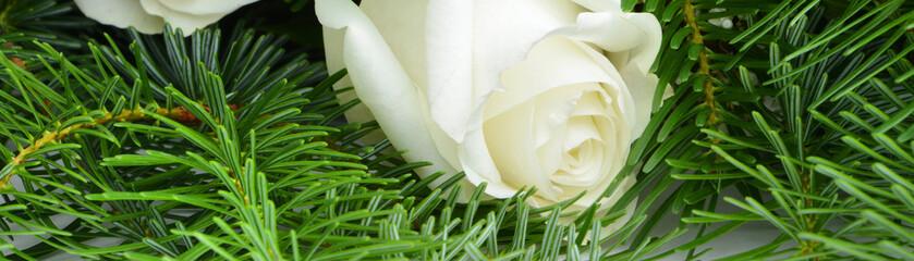 Blumen 905
