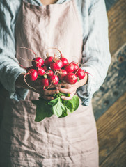 Female farmer wearing pastel linen apron and shirt holding bunch of fresh ripe radish with leaves in her hands, selective focus. Organic produce or local market concept
