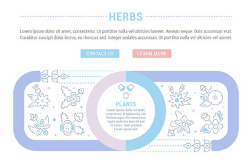 Website Banner and Landing Page of Herbs.