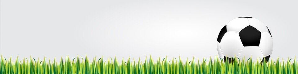 Soccer ball on the grass, banner, vector illustration