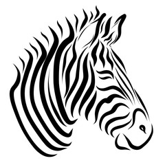 The head of the zebra, painted only with black lines