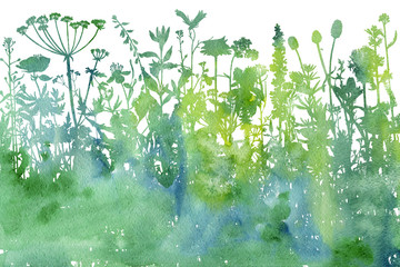 Foto auf Gartenposter Aquarell Natur Watercolor background with drawing herbs and flowers