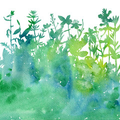 Spoed Fotobehang Aquarel Natuur Watercolor background with drawing herbs and flowers