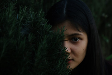 Close up portrait of young woman hidden behind the pine tree